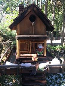 Birdhouse - Briar Patch Inn - Sedona Arizona - Cozy Cabins in Oak Creek Canyon