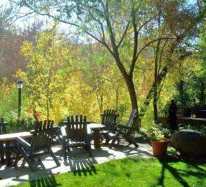 Fall Colors on Oak Creek - Briar Patch Inn - Sedona Arizona in Oak Creek Canyon