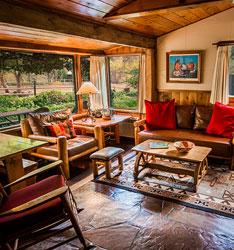 Oriole - Briar Patch Inn - Sedona Arizona - Cozy Cabins in Oak Creek Canyon