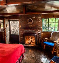 Owl - Briar Patch Inn - Sedona Arizona - Cozy Cabins in Oak Creek Canyon