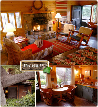 Charmant The Ivy   Briar Patch Inn   Sedona Arizona   Cozy Cabins In Oak Creek Canyon